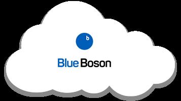 Blue Boson
